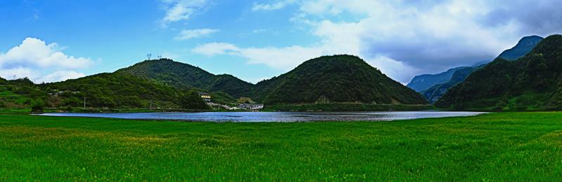 湿地之春.jpg